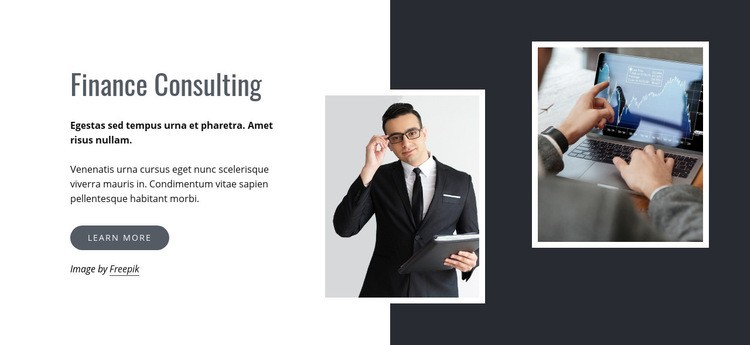 Finance consulting Homepage Design