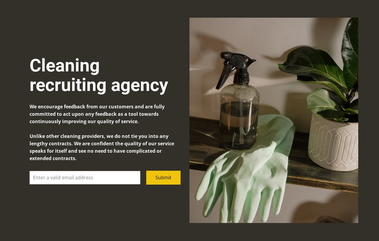 Any cleaning HTML Template
