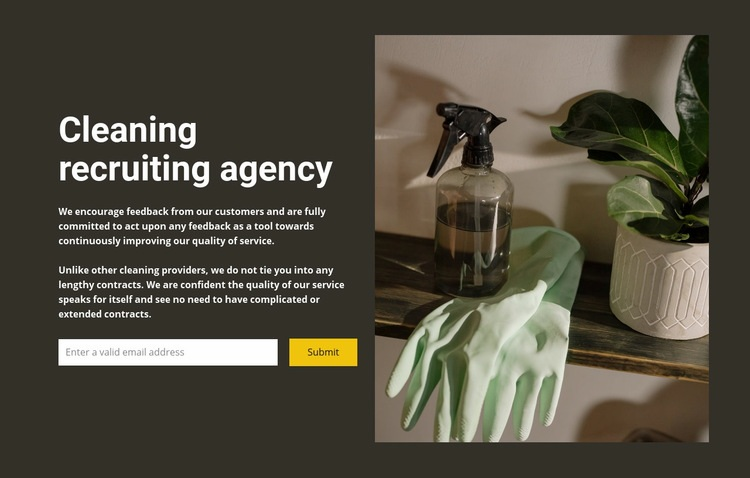 Any cleaning Web Page Design