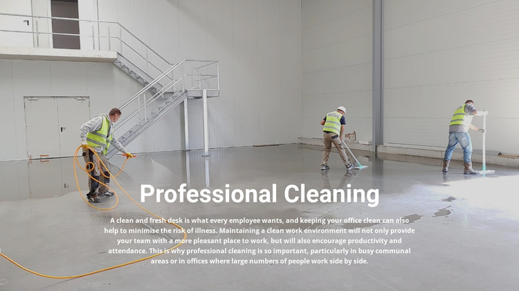 Professional cleaning Website Mockup
