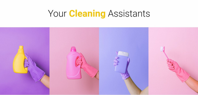 Your cleaning assistants Website Mockup