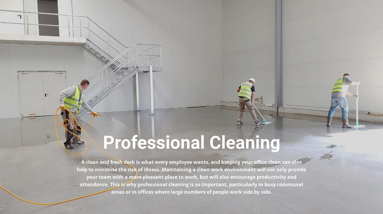Professional cleaning Website Template
