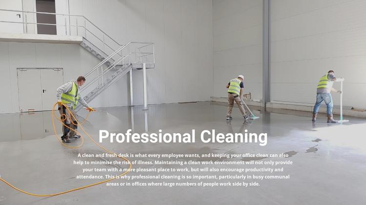 Professional cleaning WordPress Theme