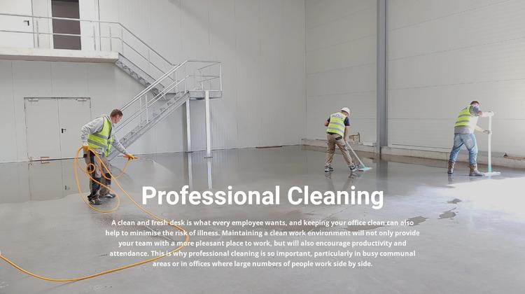 Professional cleaning WordPress Website Builder