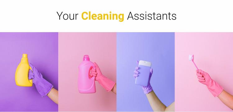 Your cleaning assistants WordPress Website Builder