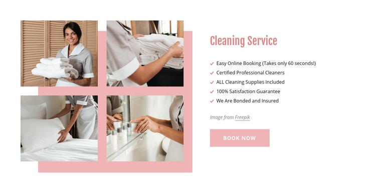 Certified professional cleaners Web Page Design