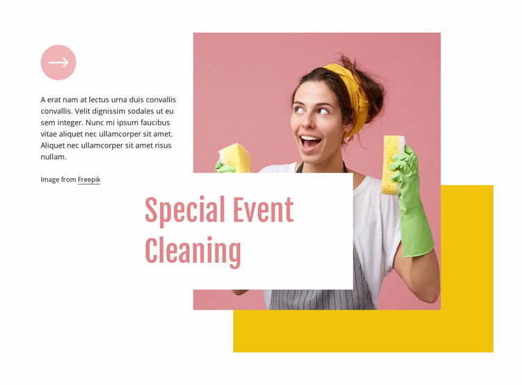 Special event cleaning Website Mockup
