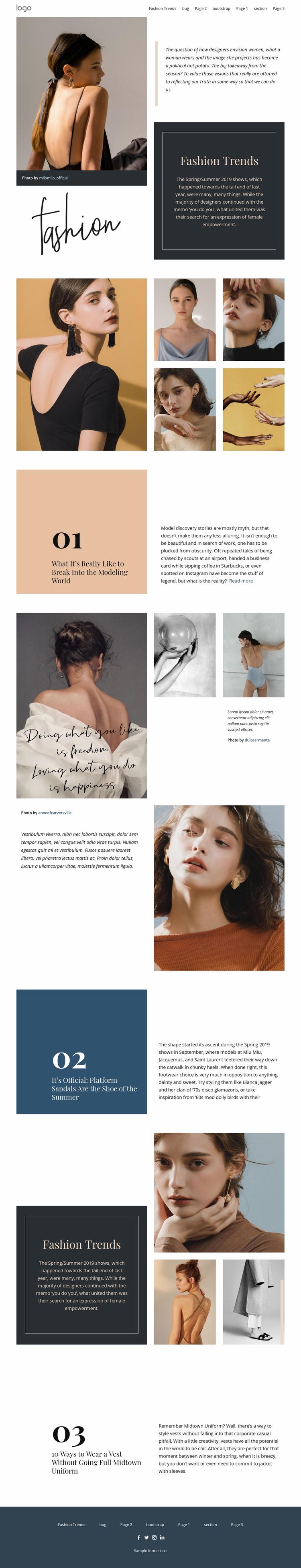 Designer vision of fashion Website Template