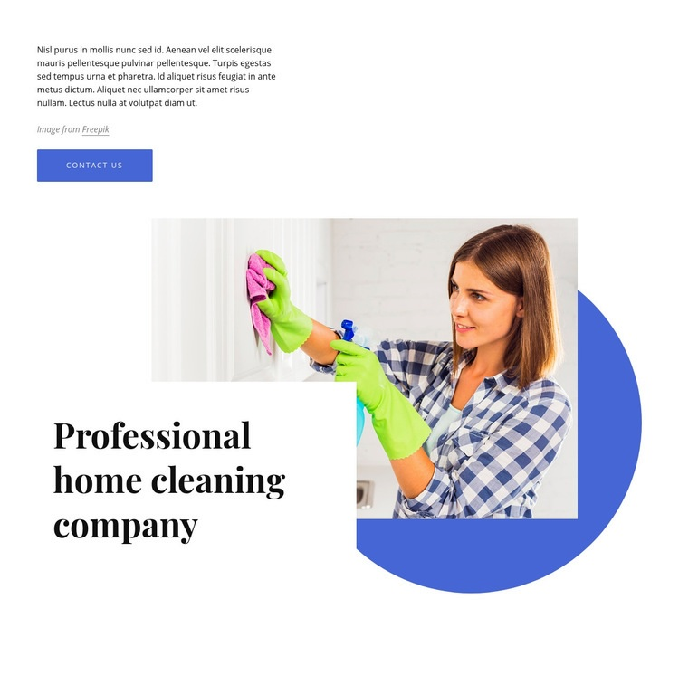 Professional home cleaning company Web Page Design