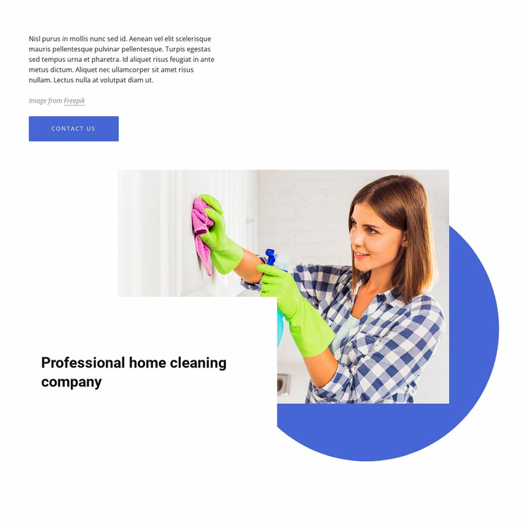 Professional home cleaning company Website Mockup