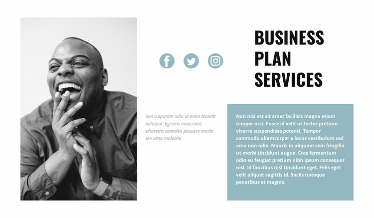 Drawing up a business plan Website Mockup