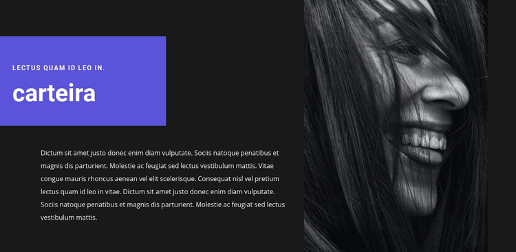 Portfólio do artista Modelo de site