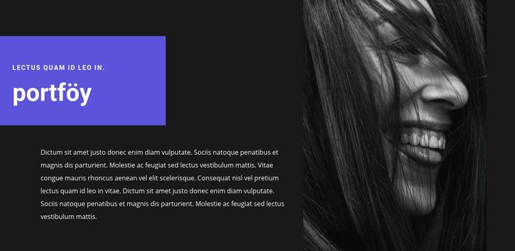 Sanatçı portföyü Web Sitesi Şablonu