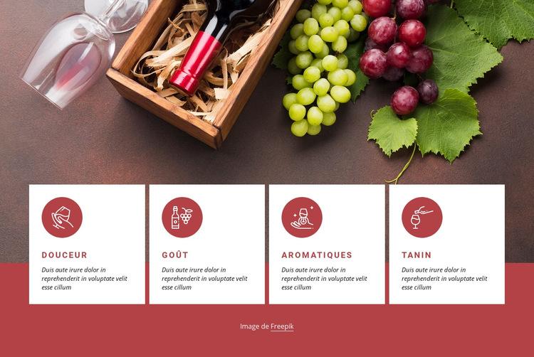 Premiers pas avec le vin Modèle de site Web