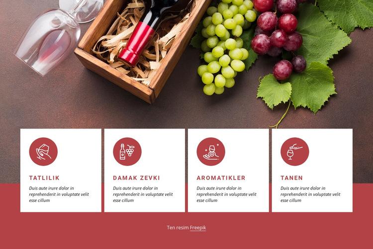 Şarapla Başlarken Web Sitesi Şablonu