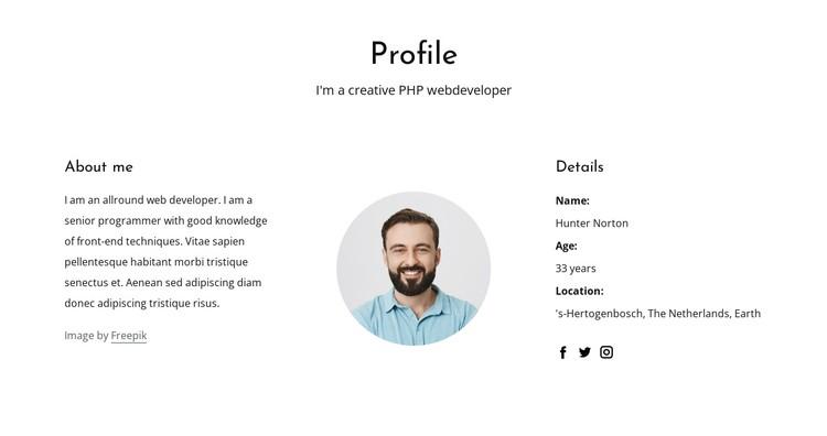 Web developer job profile CSS Template
