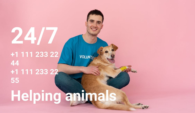 24/7 help to animals HTML Template