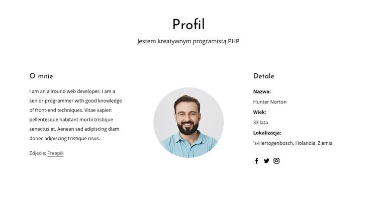 Profil pracy programisty internetowego Szablon witryny sieci Web