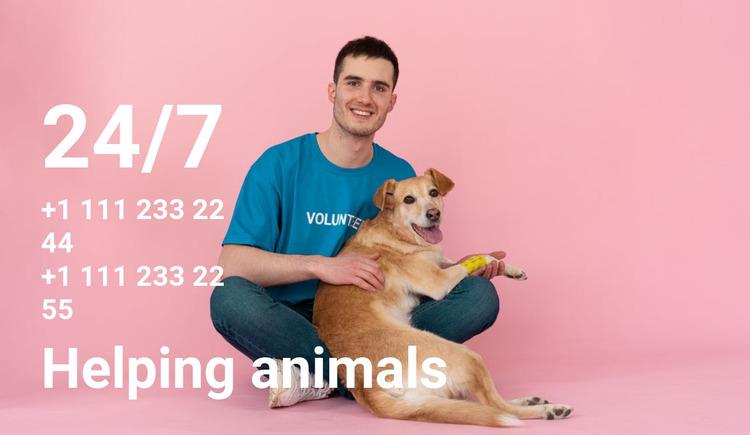 24/7 help to animals Website Mockup