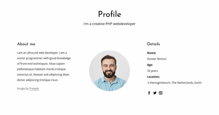 Web developer job profile Website Template