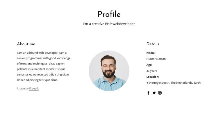 Web developer job profile WordPress Theme