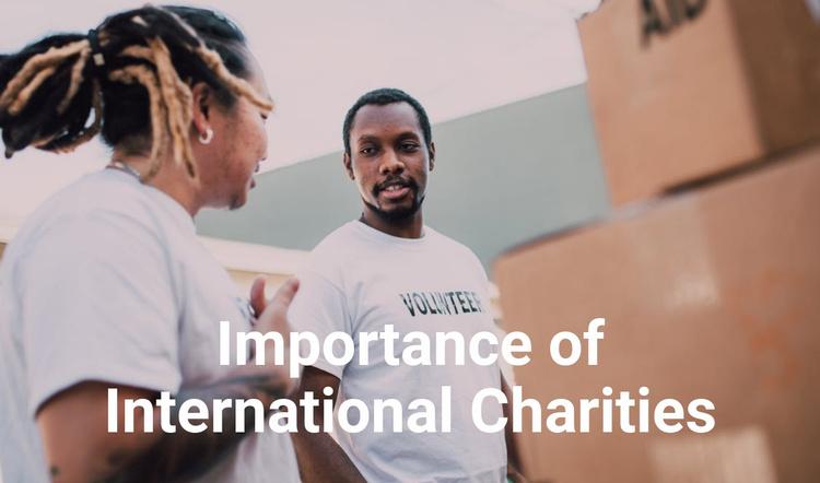 Importance of international charities Website Template