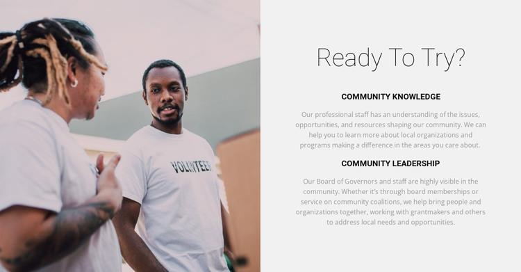 Our volunteers will help WordPress Theme