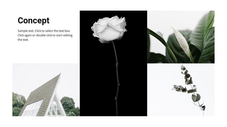 Conceptual ideas Web Page Design