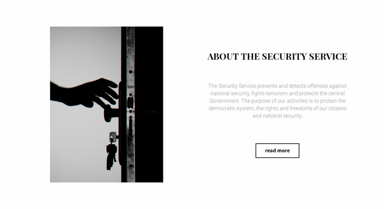 Security of houses and apartments Website Template
