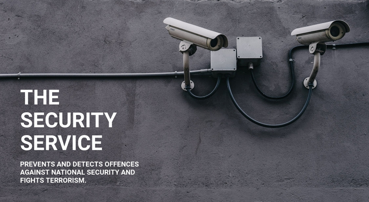 CCTV security Website Builder Software