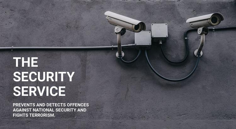 CCTV security Website Mockup