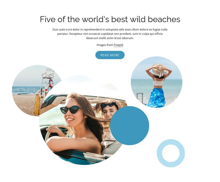 Best wild beaches HTML Template