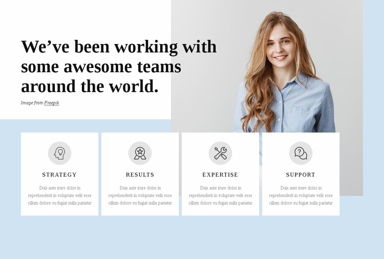 Professional service firm Website Template
