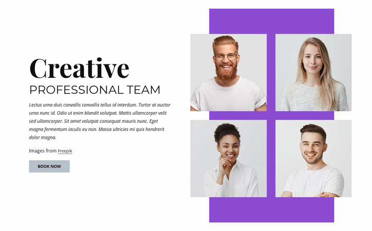 Creative professional team Website Template