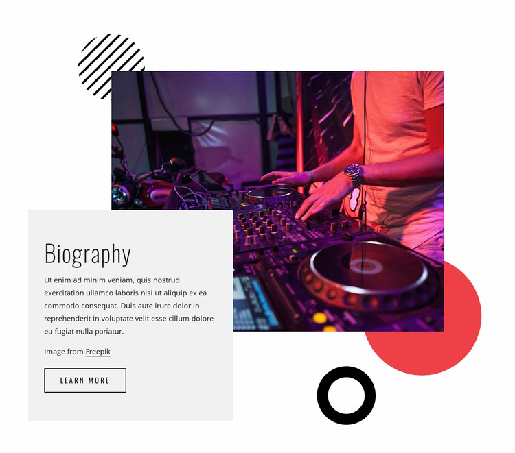 Dj Night biography WordPress Website Builder