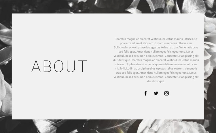 About the best designer Website Template