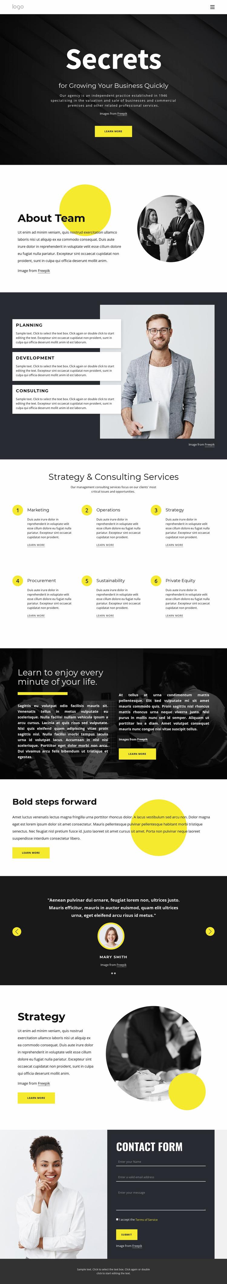 Secrets of growing business Website Mockup