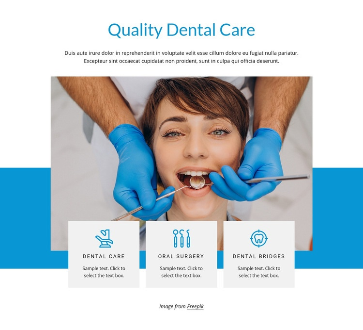 Quality dental care Html Code Example