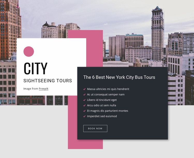 City sightseeing tours Website Template
