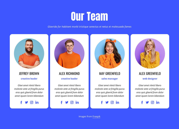 Our professional team HTML Template