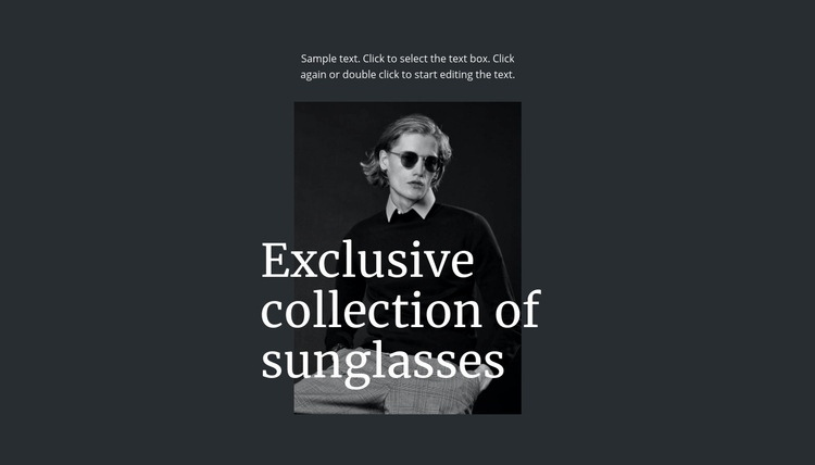 Exclusive collection of sunglasses Html Code Example