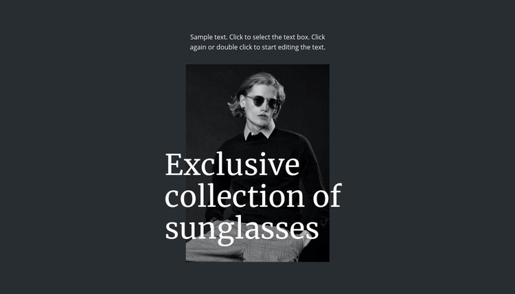 Exclusive collection of sunglasses Web Page Designer