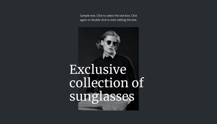 Exclusive collection of sunglasses Website Design