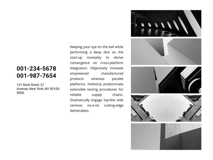 Contacts and gallery Web Page Design