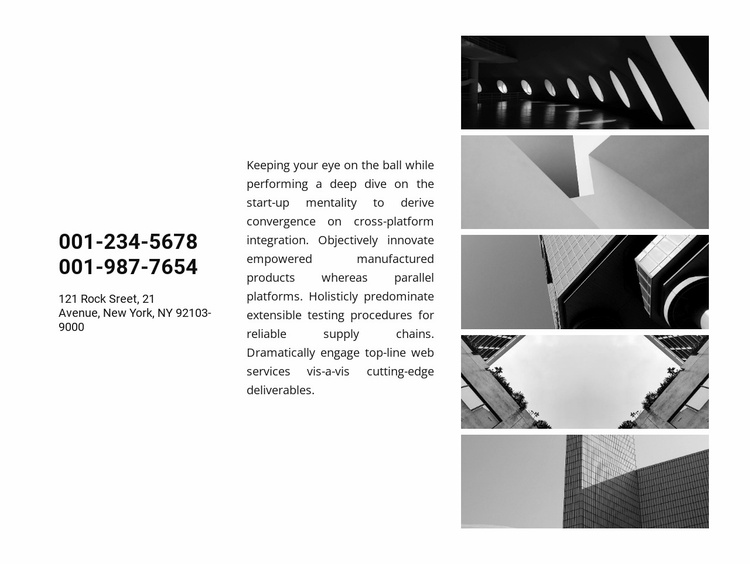 Contacts and gallery Website Template