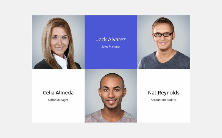 About our business team  Website Template