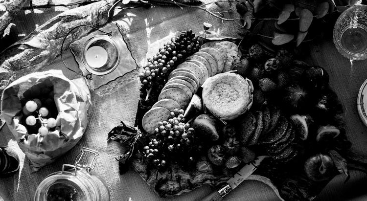 Food First Website Template
