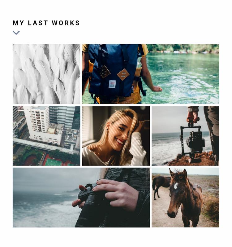 Last works gallery  WordPress Website Builder