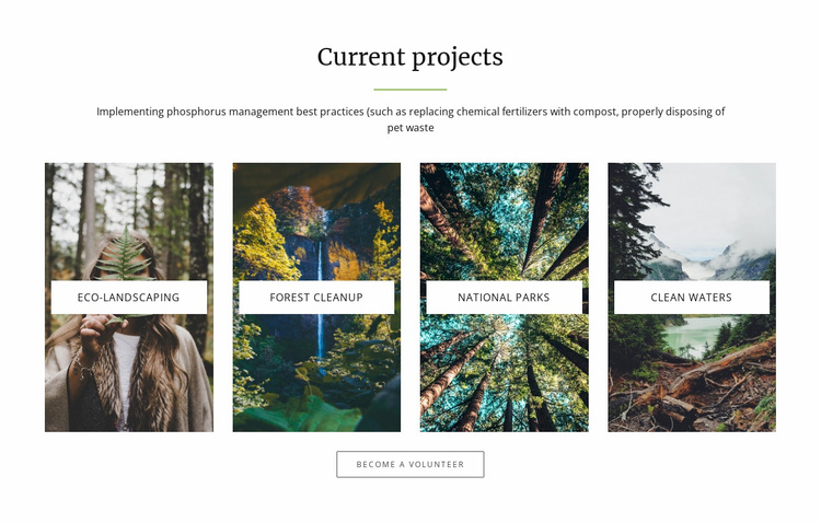 Current projects  Website Template