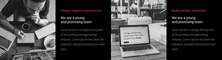 We are a young and promising team CSS Template